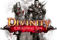 divinity original sin video game